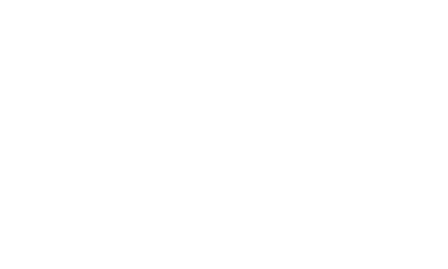 the michelangelo logo